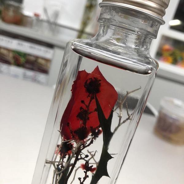 h-rose.jpg