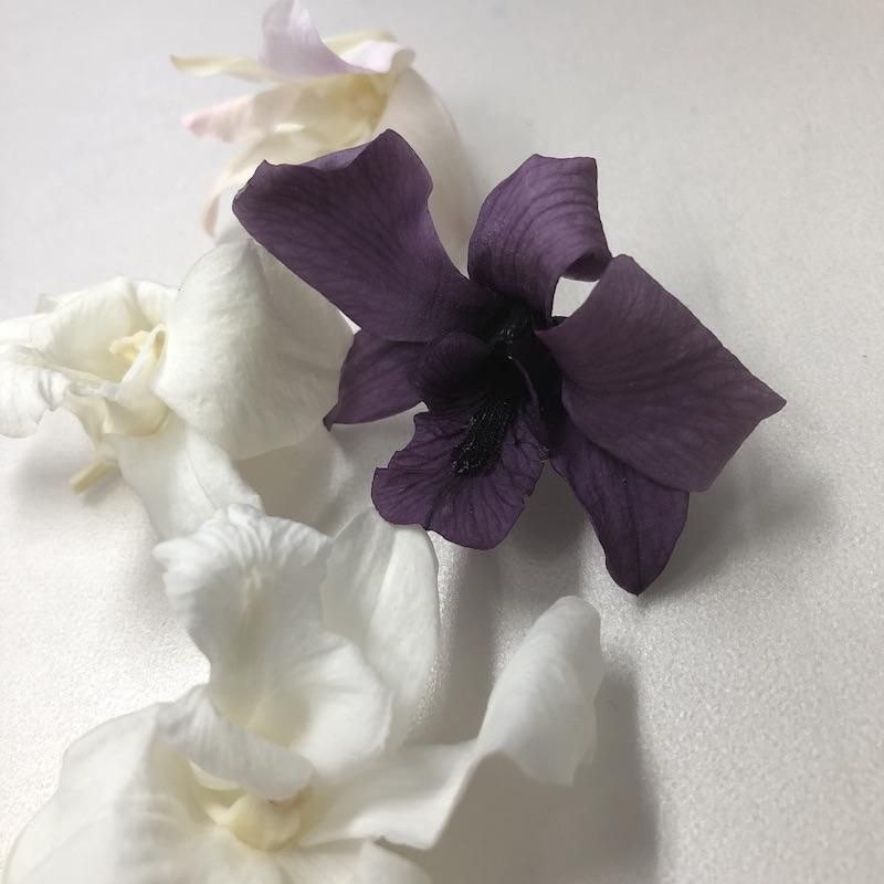 https://www.hanadaigaku.com/tenchoblog/images/IMG_6294.jpg